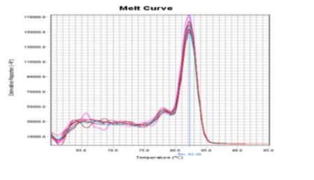 EBT-1802 performance data 2.PNG